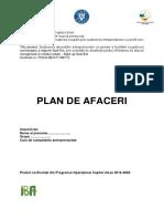 PLAN DE AFACERI PIZZERIE.docx