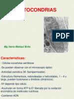 biocelu-6-120915155014-phpapp01