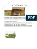 DIY Housing Tips for Small Pets