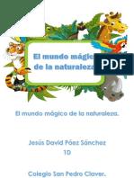El mundo mágico de la naturalezaFINAL.pdf