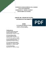 revision_de_cancer_de_pulmon.pdf