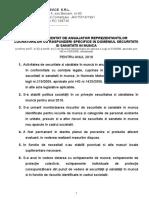Raport Angajator - Copy