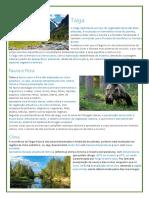 Biomas terrestres - Taiga, Amazônia e Florestas Temperadas