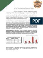 Informe Ejecutivo Amiga Dayana
