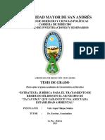 ESTABILIDAD AMBIENTAL TACACOMA.pdf