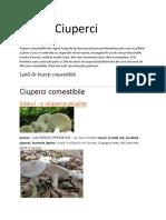 Ciuperci.docx