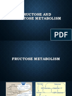 Fructose and galactose metabolism 2019.pdf