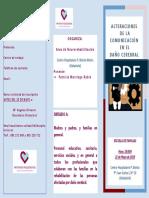 Escuela de Familias_Valladolid_ Las alteraciones de la comunicación en el DCA
