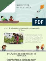 PROCEDIMIENTO DE ADOPCION LEY N°19
