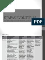ETAPAS EVOLUTIVAS.pdf