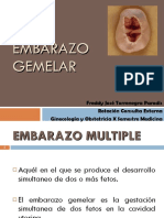 embarazogemelarfinal-111025192906-phpapp01
