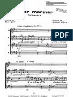 AmorMariner-Oltra.pdf