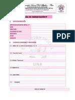 Peei-cpp-003-Goc Guía de Observación Curricula (1)