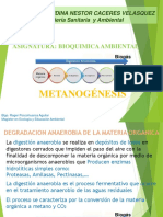 11. METANOGENESIS