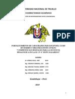 Informe de Proyecto de Responsabilidad Social Universitaria 2019