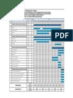 Programacion - Cronograma - Presupuestos PAV TRAMO II Prog 01