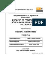 ReporteTecnico_Producción de Colorante