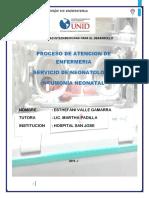 PROCESO DE ATENCION DE ENFERMERIA NEONATOLOGIA.docx