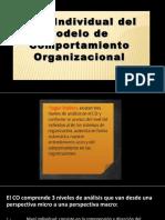 3 niveles de comportamiento organizacional