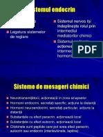 Sistemul Endocrin Slide 2008