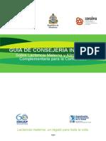 manual diagramado.pdf