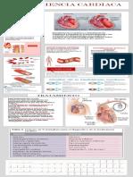 infografia insuficiencia cardiaca