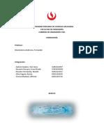 Informe Parte 1 (Cuenca Hasta Hidrologia)