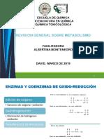 COENZIMAS.pdf