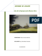 Avaluo BUENOS AIRES.pdf