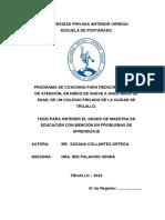 nueva tesis.pdf