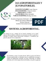 sistemas agroforestales y silvopastoriles