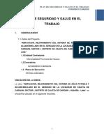 Plan de Seguridad Carquin.docx