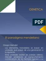 Clase Genetica