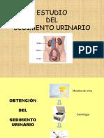 sedimento urinario