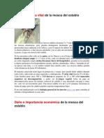 Biología y ciclo vital DE LAMOSCA.docx