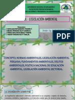 CAP. X. LEGISLACION AMBIENTAL 2.pptx