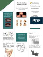 triptico-de-oclusion.docx