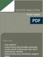1. Sistem Skeleton