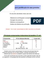 Aula_Trabalhando com Proteinas.pdf