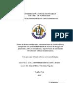 Tesis Doctorado - Guillermo Saldaña Rojas.pdf