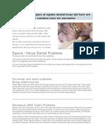 Common Dental Proble