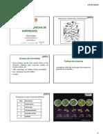 Manejo postcosecha de hortalizas.pdf