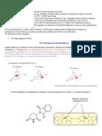 Medicinas_quirales