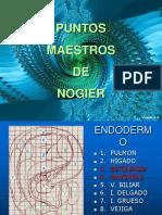F. Auriculoterapia1 - Dr. Jorge Ivan Carvajal