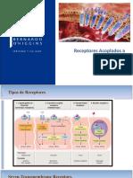 Clase_04_ Receptores Acoplados a Proteína G