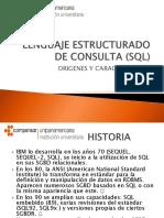 Lenguaje Estructurado de Consulta (SQL)1