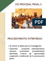 DERECHO PROCESAL PENAL II presentación 1.pptx