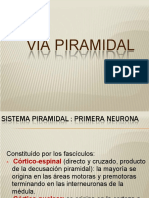 VIA PIRAMIDAL Y REFLEJOS.pptx