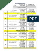 Cronograma de Actividad.1docx