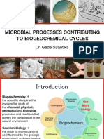 Chapter 11-Microbial Processes Contributing to Biogeochemical Cycles (2)